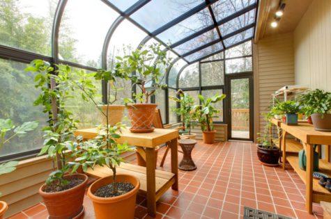 Wintergarten mit grosser Glasfront und vielen Pflanzen.